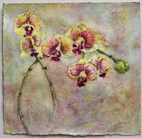 Anita Helen Cohen: till next bloom »